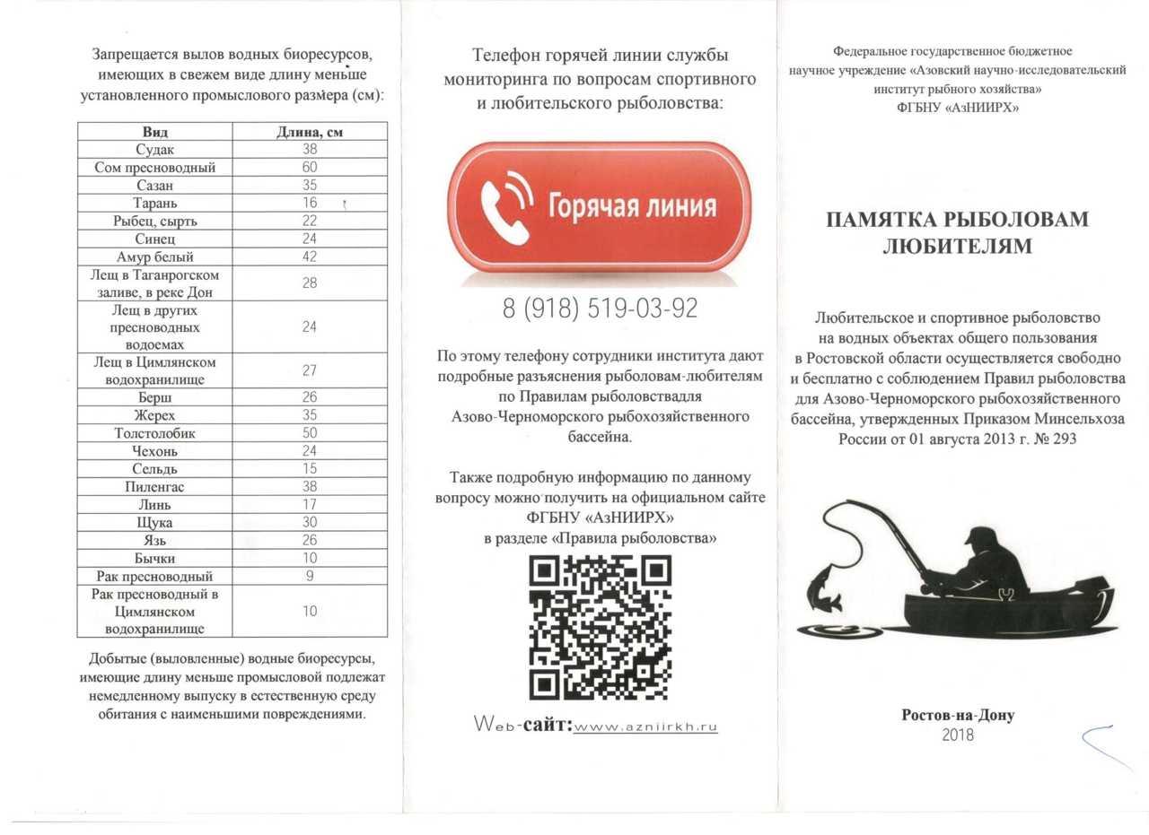 Минимально разрешенные к вылову размеры рыбы в азово-черноморском рыбохозяйственном бассейне