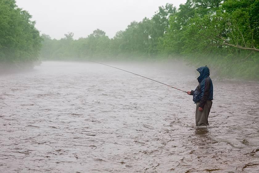 Клюет ли рыба в дождь: особенности рыбалки после дождя летом, качество клева