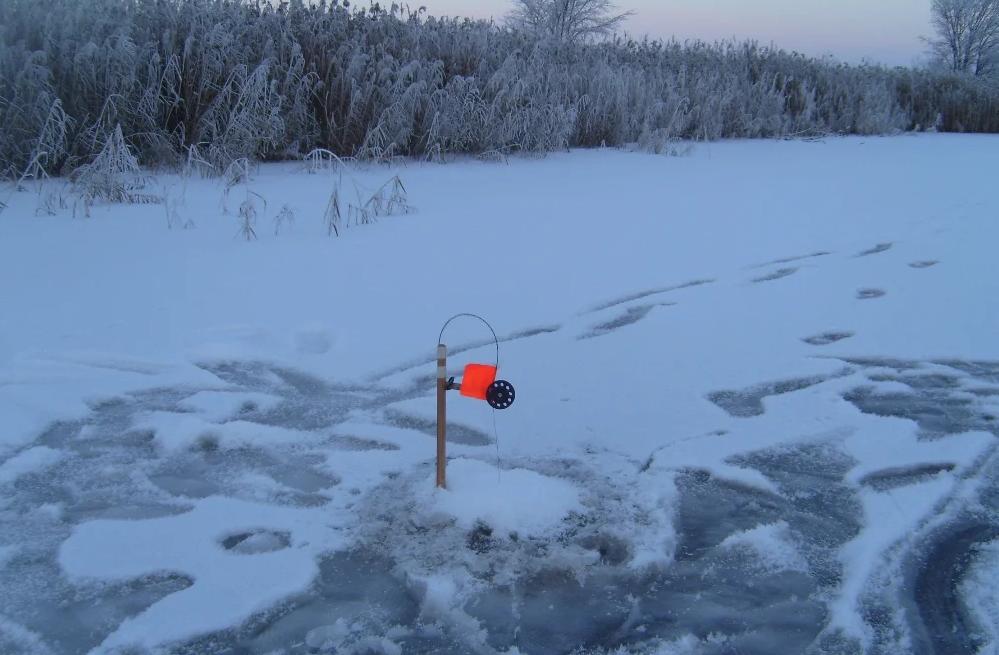 Как происходит рыбалка на жерлицы летом и демонстрация на видео