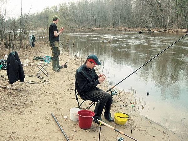 Ловля ельца осенью — общие принципы поимки этой рыбы - всё о рыбалке - медиаплатформа миртесен