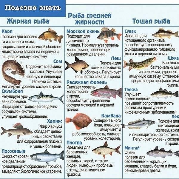 Разделанная рыба без позвоночника и костей