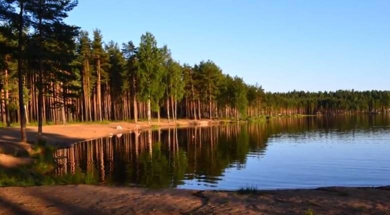 Медное озеро в ленинградской области (меднозаводский разлив)