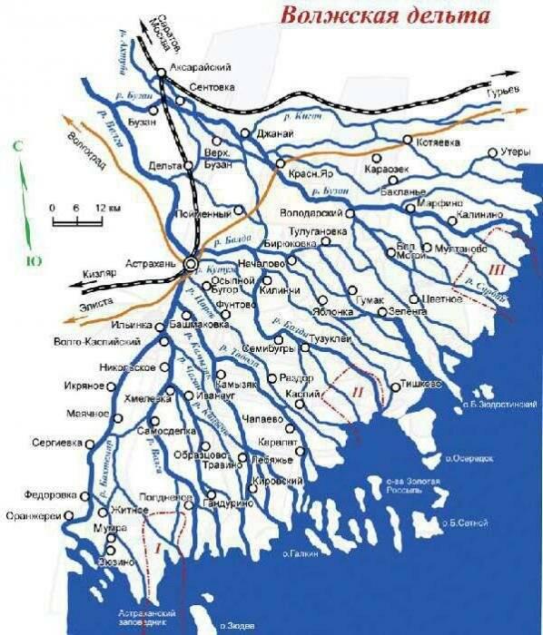 Река ея. география, флора, фауна, рыбалка - моя география