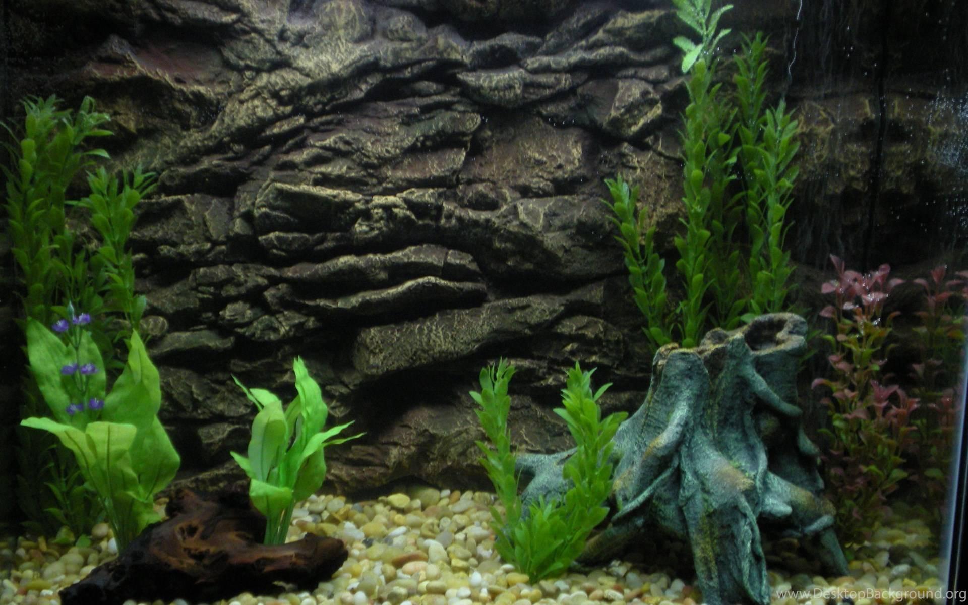 Как сделать декор для аквариума своими руками