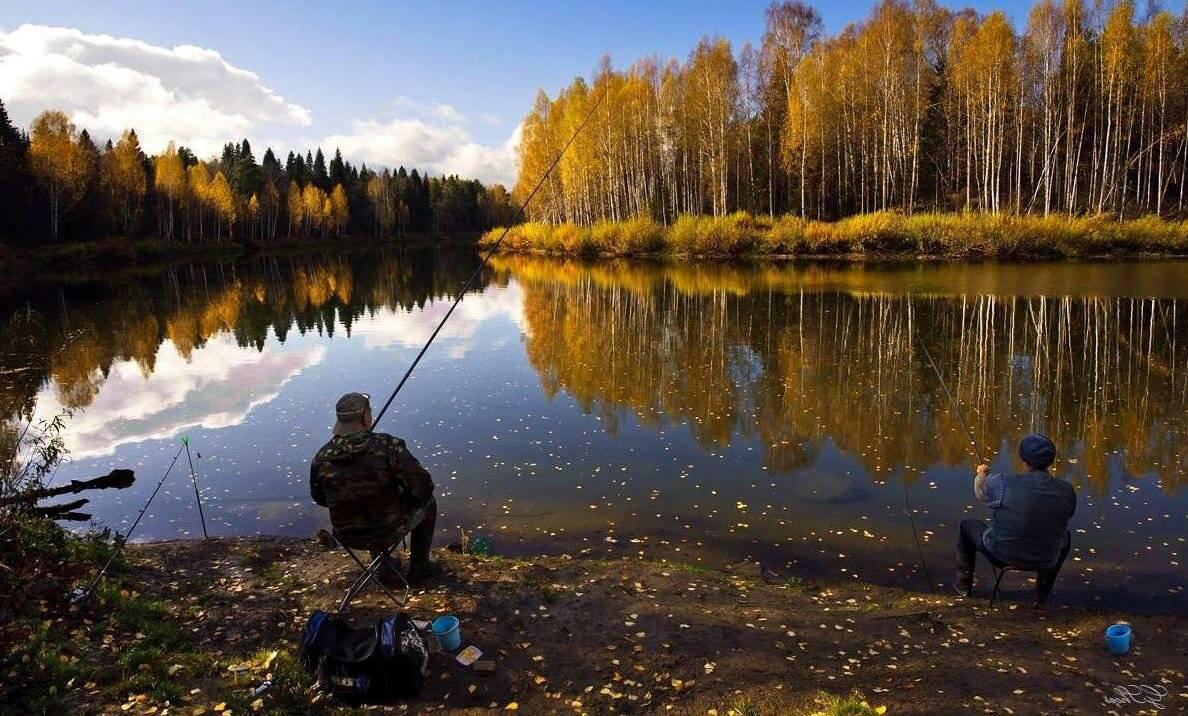 Лучшая осенняя насадка на карася - успешная ловля карася осенью