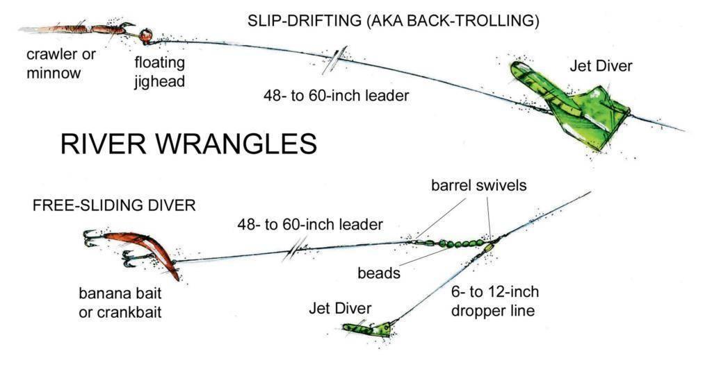 Тонкости тролинговой рыбалки на судака: правильный выбор места, снасти и приманки