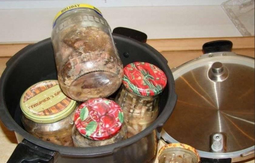 Консервы из судака в домашних условиях: (консервы в масле, томате)