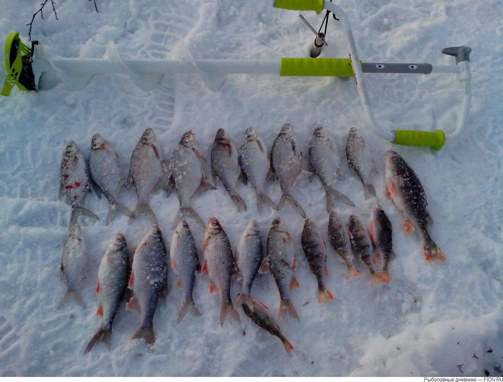 Рыбалка на яузском водохранилище ~ рыбалка