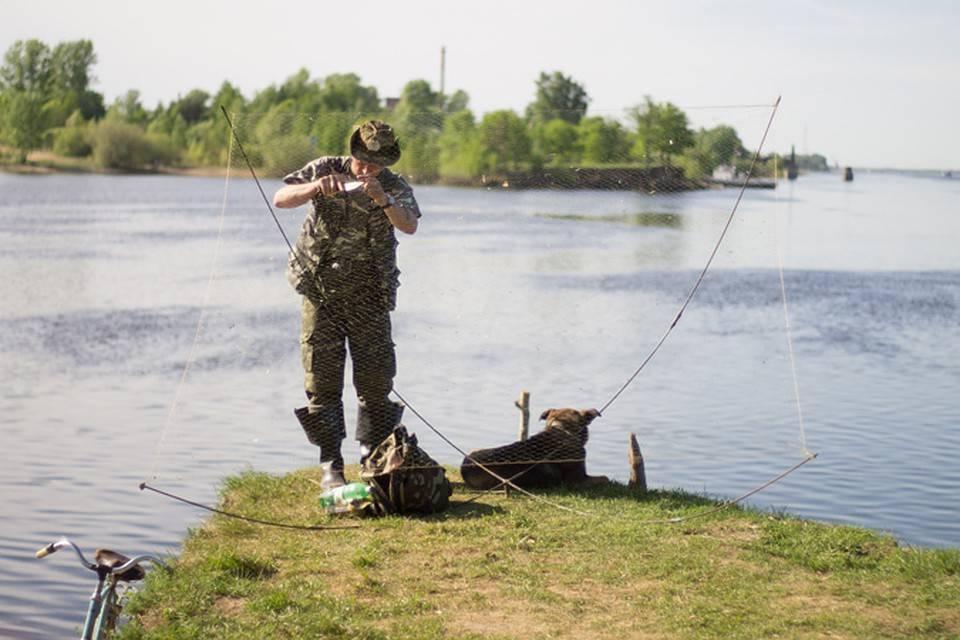 Рыбалка в татарстане: в зеленодольске и вахитово, троицкий урай и сюкеево, другие рыболовные места, рыбалка на реке ик и на свияге