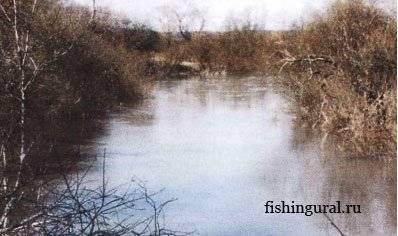 Где клюет рыба на самом деле не угадаешь но места хорошие могу показать