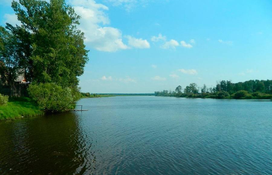 Озера томской области: красота и труднодоступность