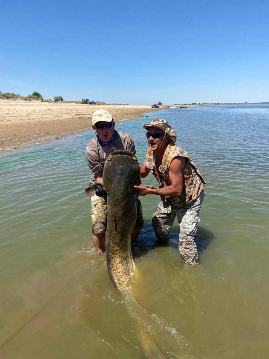 Вобла в астраханской области: особенности рыбалки – рыбалке.нет