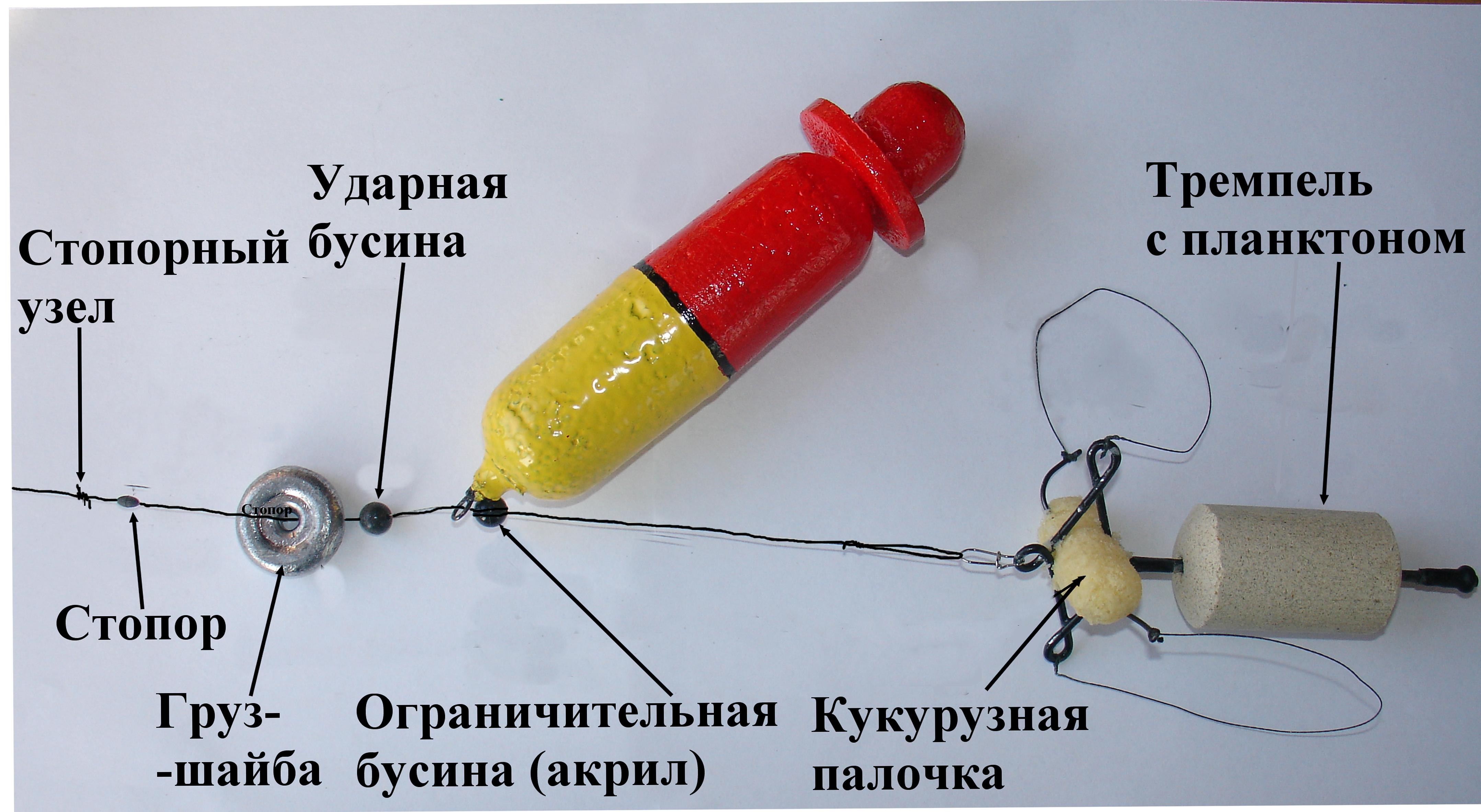 Снасть на толстолобика: устройство оснастки в деталях, как сделать своими руками, монтаж