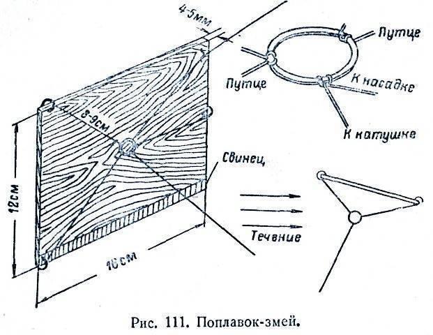 Большой плоскохвост, морской крайт или китайская морская змея