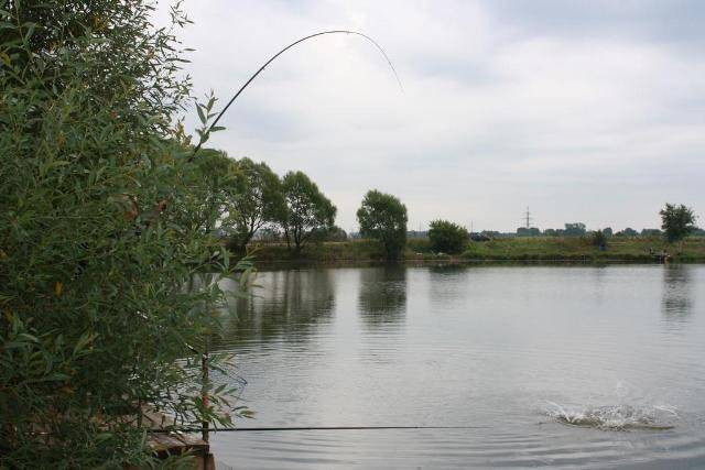 Рыболовный клуб «Ба! Рыбина!» в Растуново