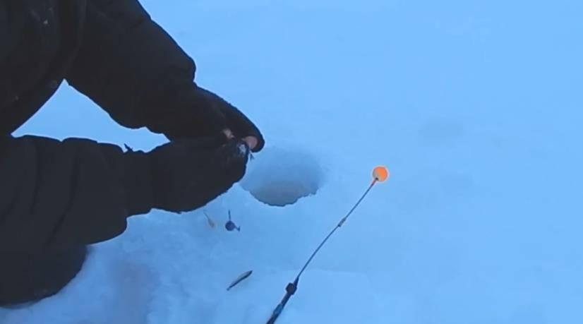 Ловля судака на тюльку зимой: особенности рыбалки, подготовка снастей
