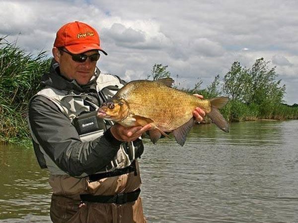 Рыбалка в сызрани: лучшие места и прогноз клёва :: syl.ru