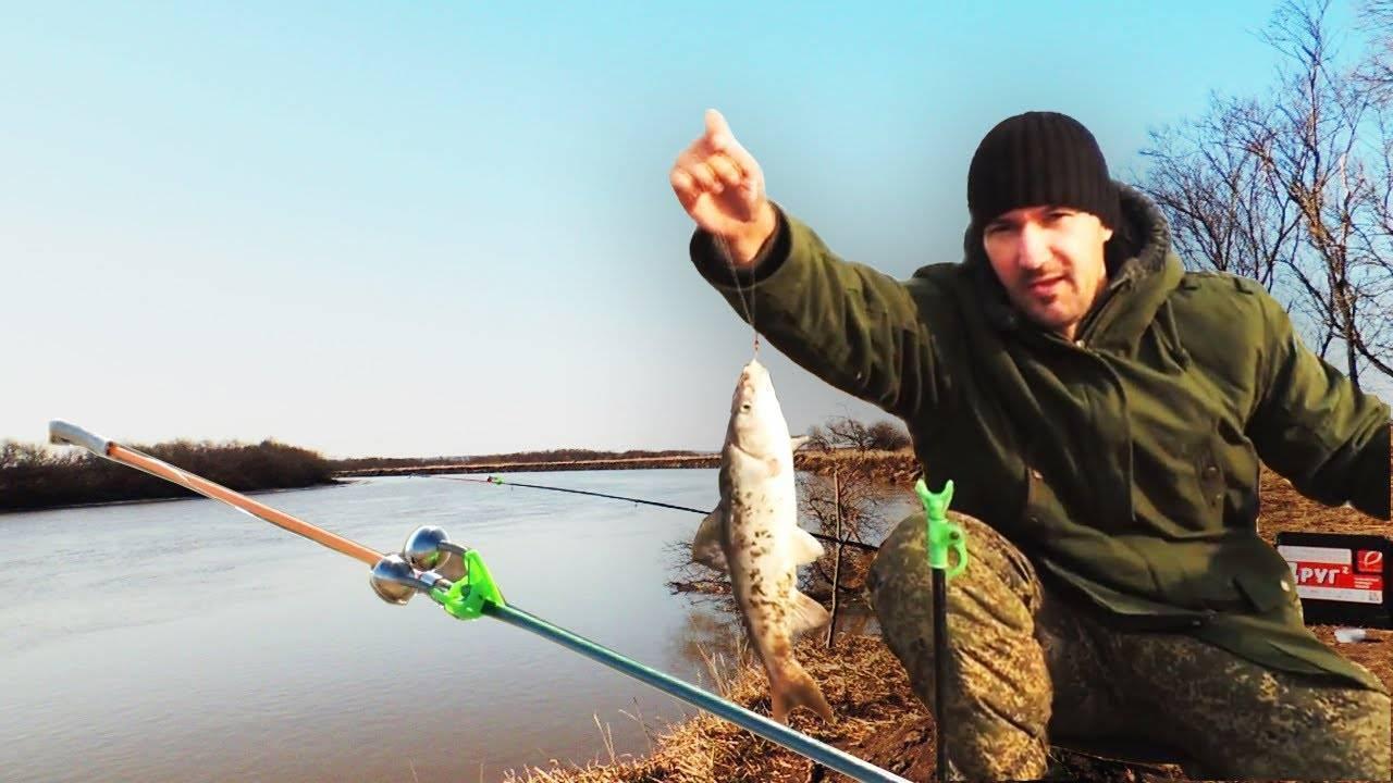 Коломна - календарь рыболова. рыбалка в коломне, график клёва рыбы.