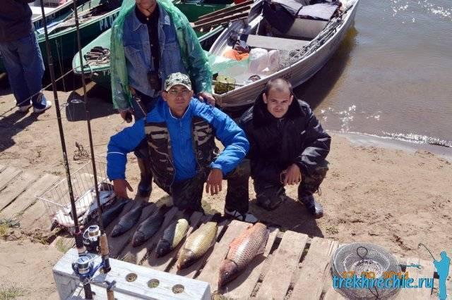 Ловля сазана на ахтубе в сентябре, как ловить в августе, видео