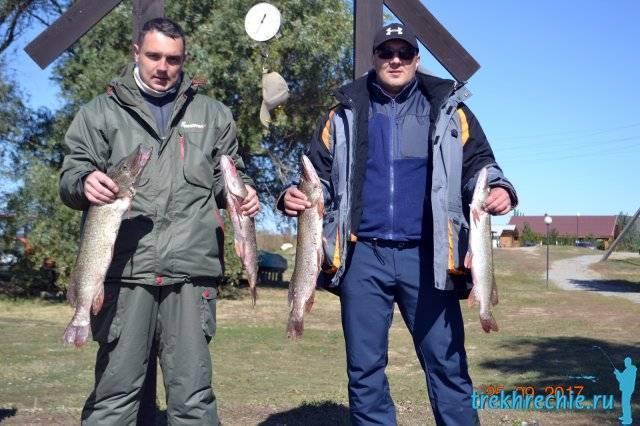 Способы сохранить рыбу при длительной рыбалке в жару | makchen.ru | яндекс дзен