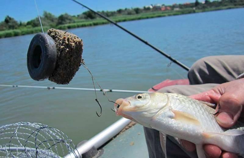 Большой улов на рыбалке: что нужно предпринять рыболову, чтобы поймать много рыбы