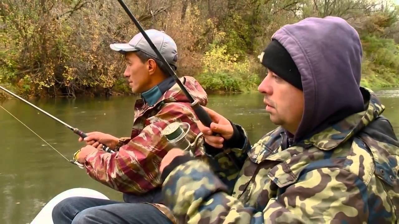 Особенности и нюансы ловли щуки осенью и в другие сезоны — как и на что лучше ловить?