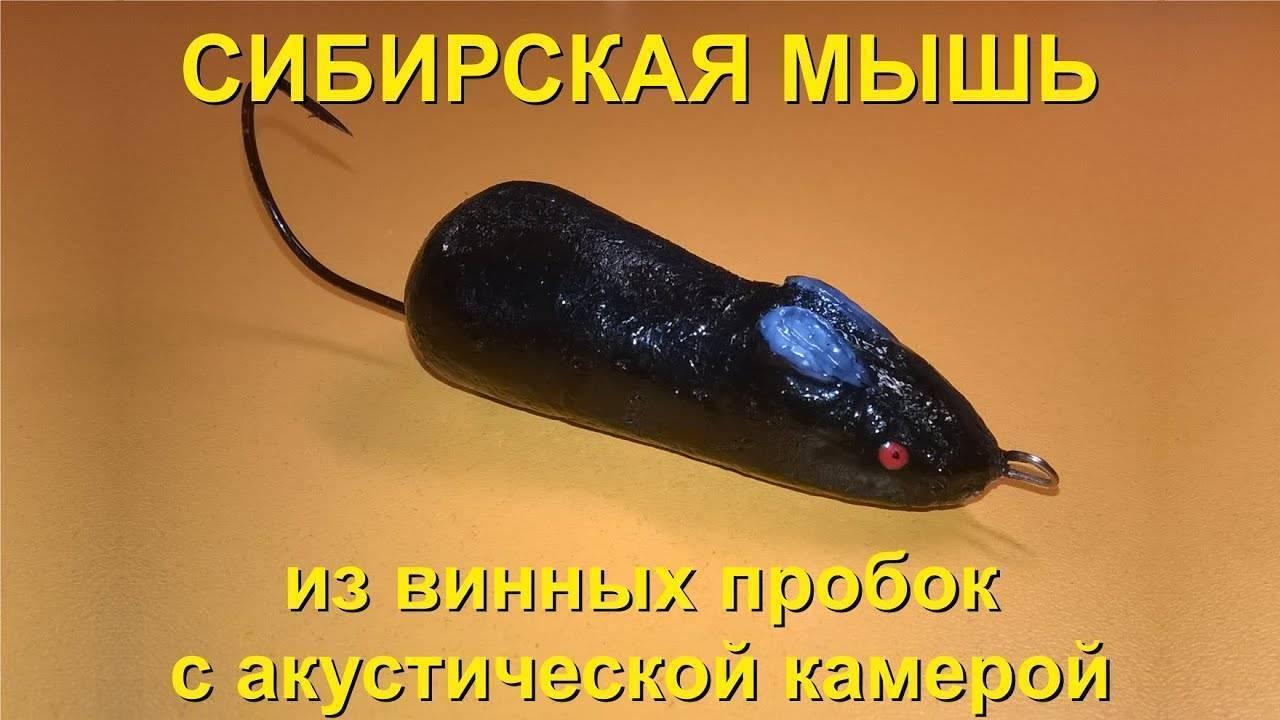 Как правильно ловить тайменя на мышь – рыбалке.нет