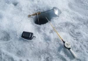 Ловля берша зимой – интересная рыбалка для продвинутых рыболовов и новичков