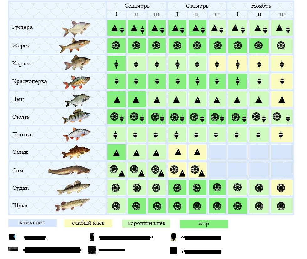 Лунный календарь рыболова на октябрь 2020 – клев мирной и хищной рыбы!