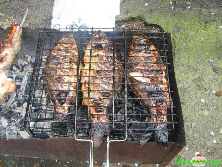 Карась на мангале: рецепты, как приготовить на углях, гриле или на решетке