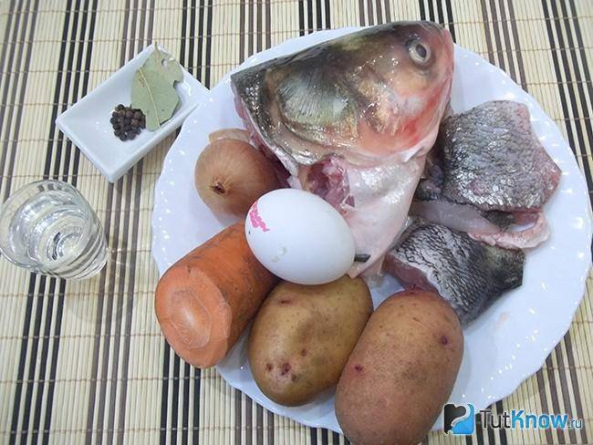 Уха из толстолобика - пошаговый рецепт с фото | первые блюда