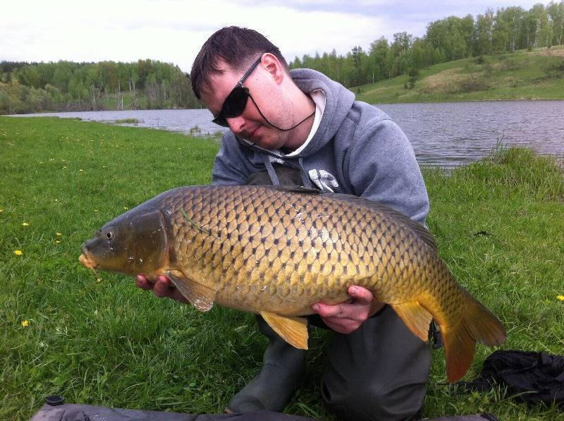 Рыбалка в ульяновске и ульяновской области: куда поехать, ловля в поселках новиковка, терентьевка