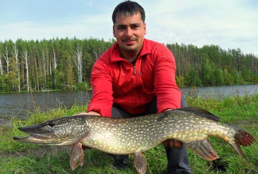 Рыбалка ульяновск - #16 - рыбалка в ульяновске