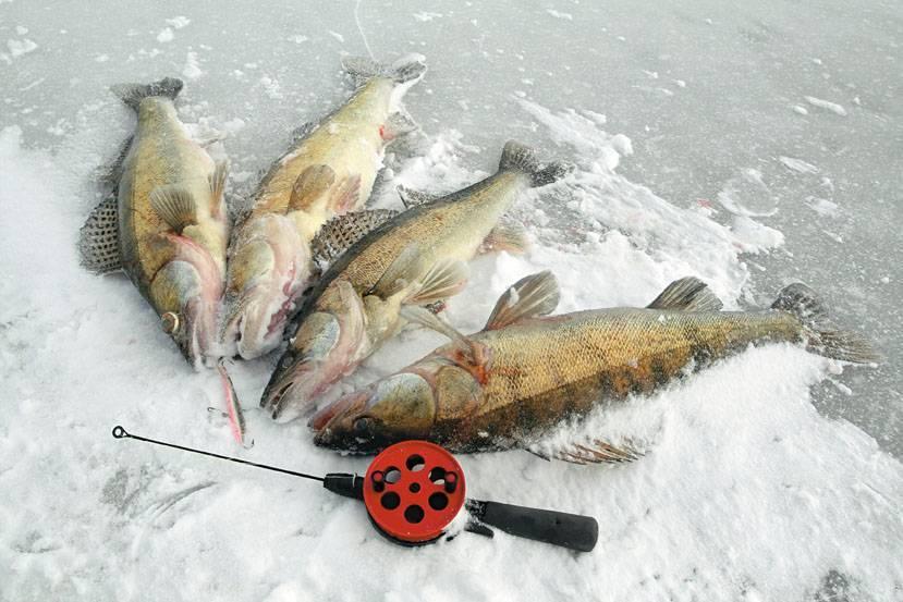 Рыбалка на реках татарстана - поискпути