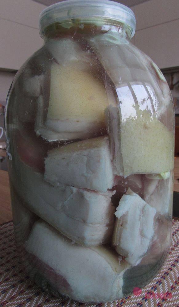 Как засолить сало в рассоле в домашних условиях вкусно и быстро.