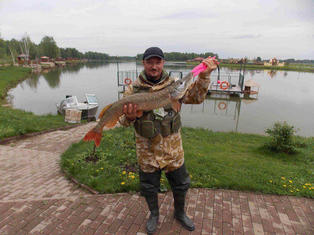 Рыболовная база «ихтиолог» в московской области - цены 2020, фото, отзывы