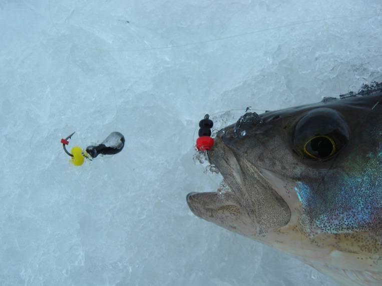 Мормышка - что это такое, зимние мормышки, видео, как привязать и виды