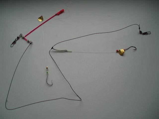 Характеристика рыбы корюшка и особенности рыбалки в разное время года