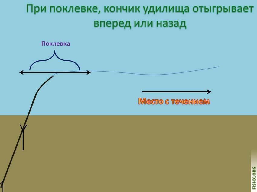 Особенности ловли плотвы весной на фидер - оснастка и тактика