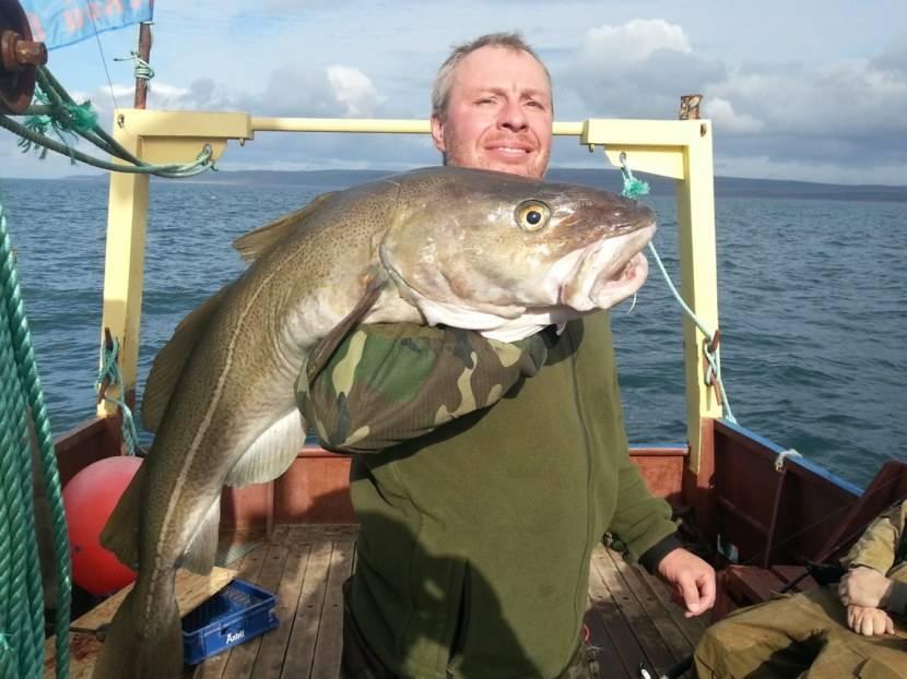 Рыбалка на баренцевом море: особенности морской ловли, какая рыба водится