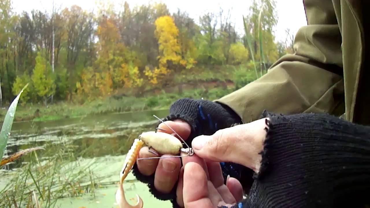 Ловля щуки осенью: где искать, как и на что ловить. осенняя рыбалка на щуку в сентябре, октябре, ноябре