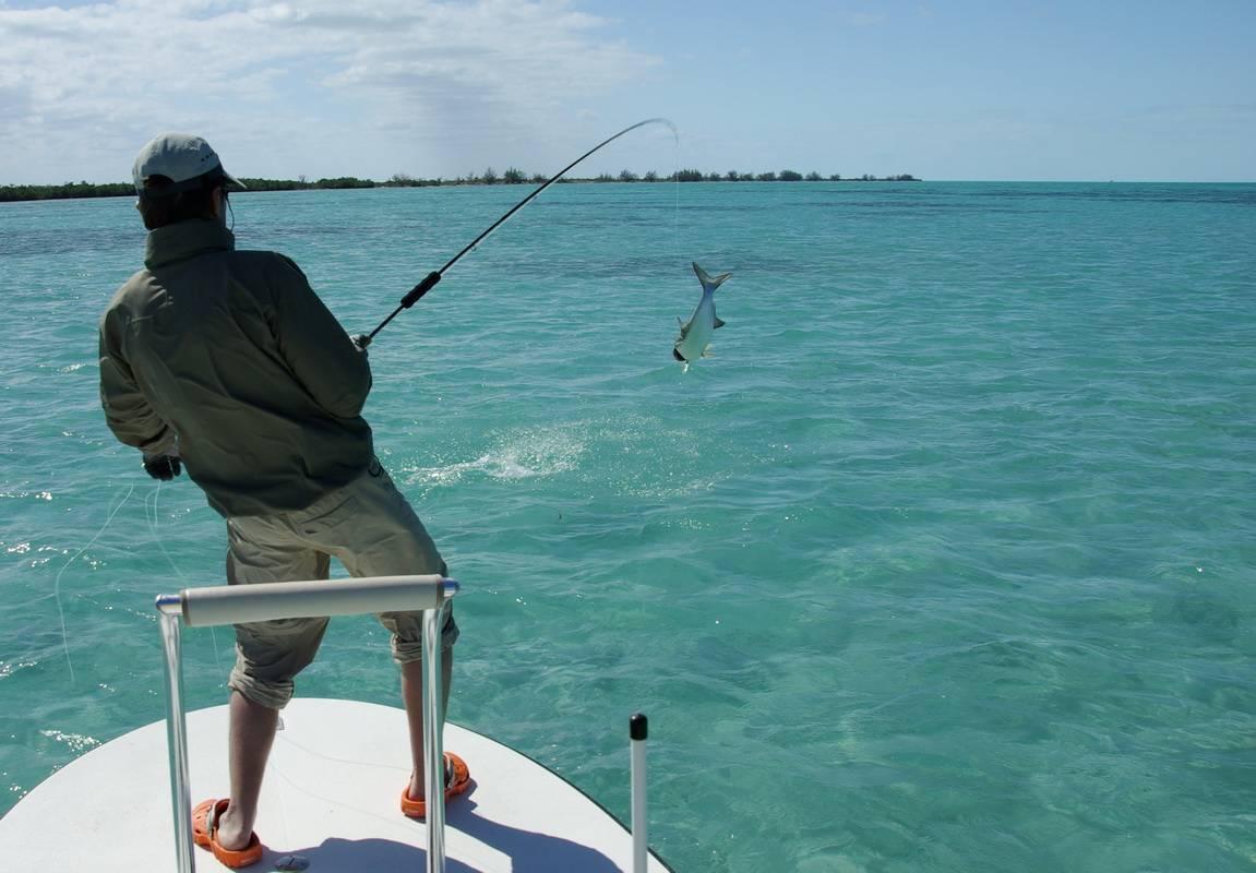 На что ловить на море с берега