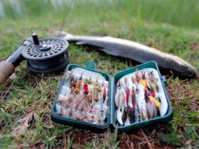Снасти для ловли форели: крючки, леска и как правильно выбрать