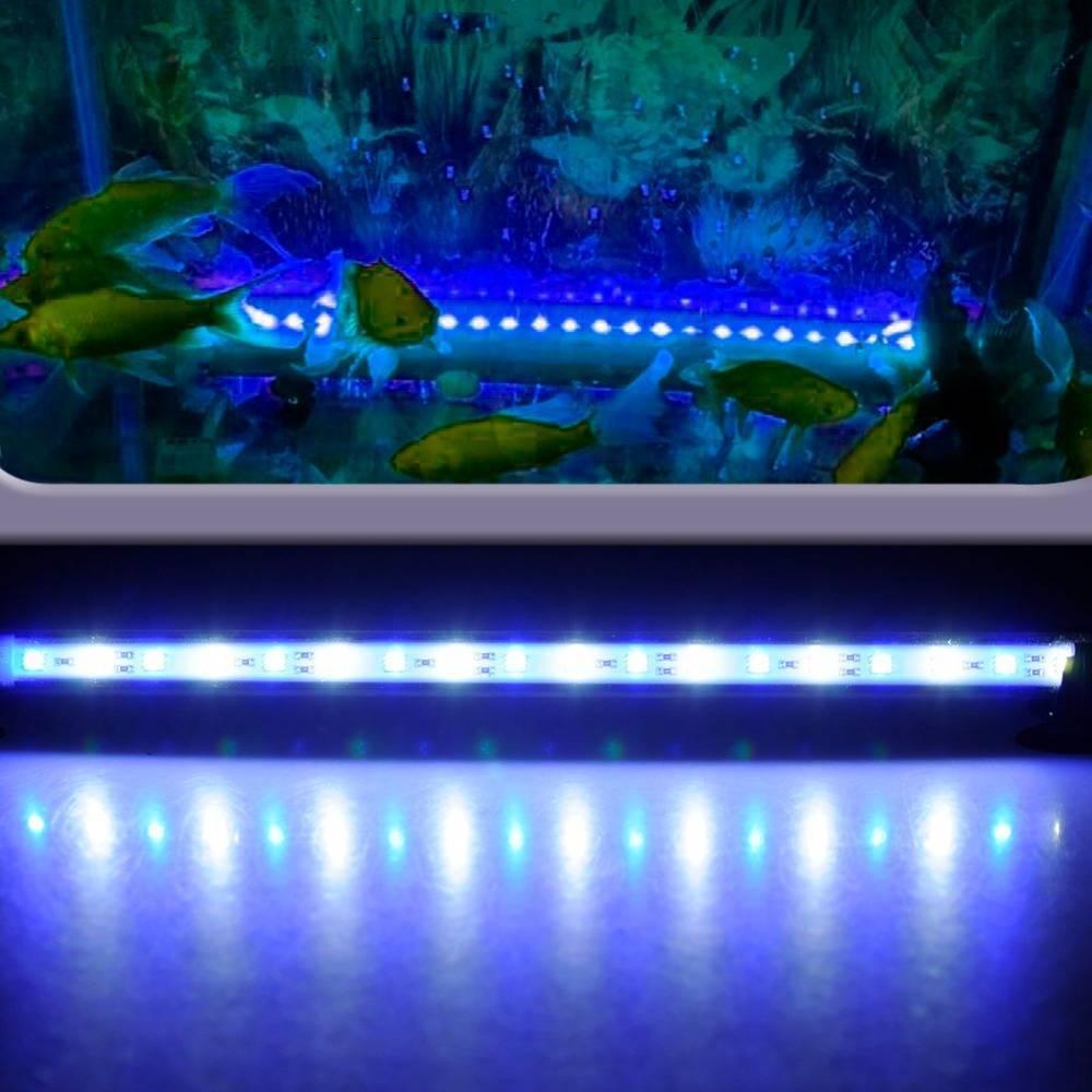 Светодиодное освещение аквариума: как сделать своими руками?