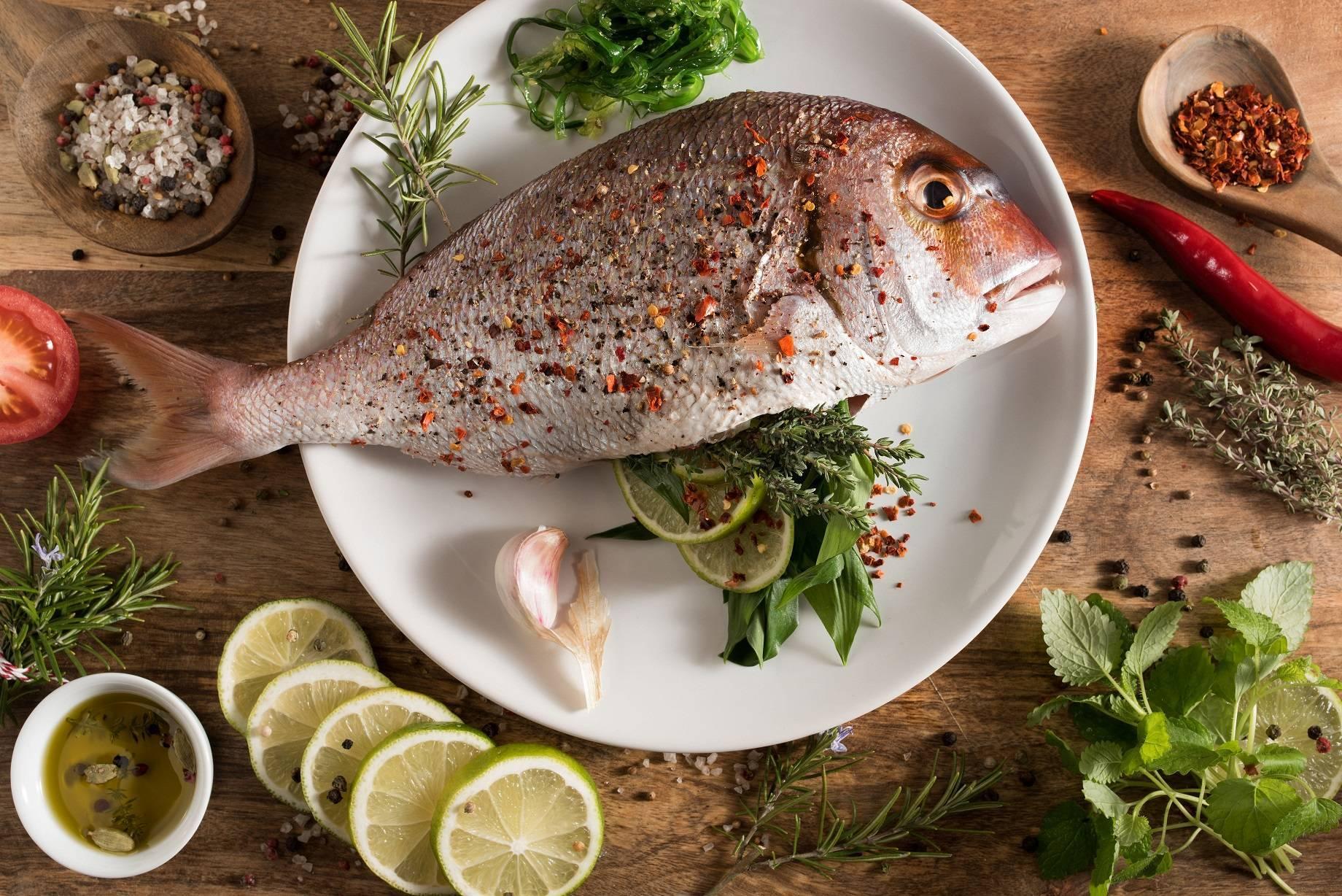 Треска рыба. описание, особенности, виды, образ жизни и среда обитания трески
