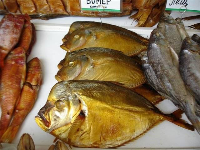 Рыба вомер: где водится и какие полезные свойства имеет