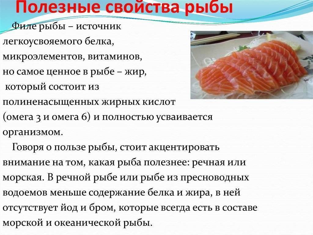 Польза кахавая: что за рыба, какая на вкус, на что похожа, возможный вред