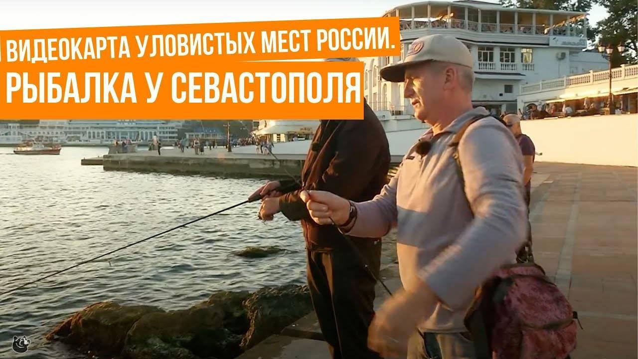 Видеокарта уловистых мест россии сезон 7-й на канале охотник и рыболов в 14:55 2.04.2020, кадры, видео, актеры.