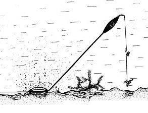 Ловля карпа на поплавочную удочку: снасти и проверенные прикормки
