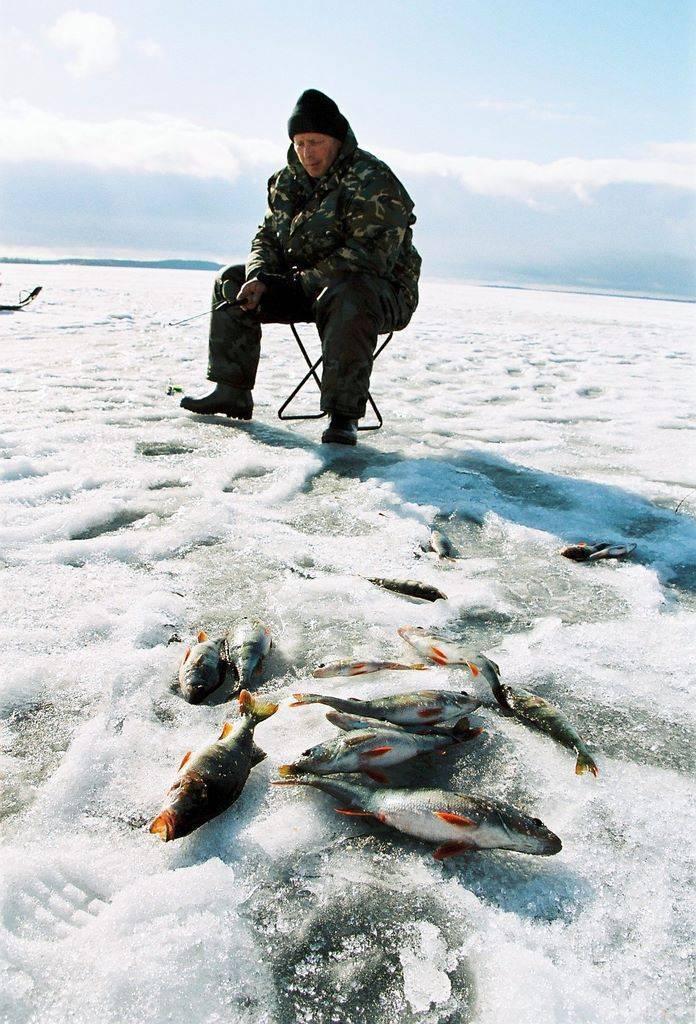 Зимняя рыбалка в карелии | цены на рыбалку зимой с арендой дома на базе отдыха: отзывы
